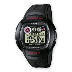 W-210-1CVES CASIO Collection