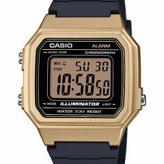 W-217HM-9AVEF Casio Collection